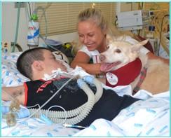 cães terapia crianças FCMSCSP 0003