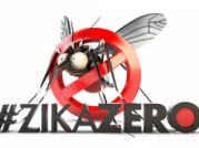 zika_MEC
